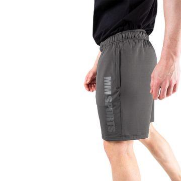Function Shorts, Grey
